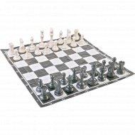 Шахматы пластмассовые.