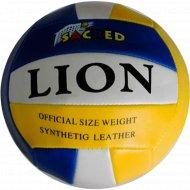 Мяч волейбольный, P-3308.