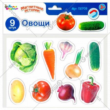 Магниты «Овощи» 9 штук.