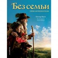 Книга «Без семьи. Приключения Реми».