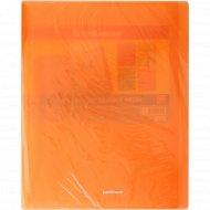 Папка А4 «Glance Neon» с 10 карманами.
