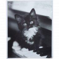 Фотоальбом «Веселое настроение» дети, котята, 10x15 см.