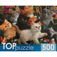 Пазлы «Игривые котята» 500 элементов.