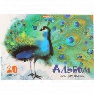 Альбом для рисования «Птицы» 20 листов.