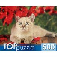 Пазлы «Тайская кошка» 500 элементов.