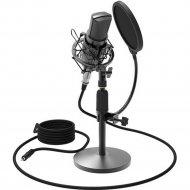 Микрофон «Ritmix» RDM-175 Black