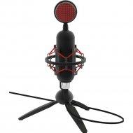 Микрофон «Ritmix» RDM-230 USB Black