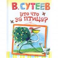 Книга «Что эта за птица» В.Г. Сутеев.