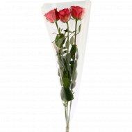 Букет длинных роз, 3 шт 60 см.