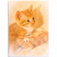 Фотоальбом «Котики» 36 фото, 10x15 см.