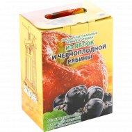 Сок из яблок и черноплодной рябины, 100% натуральный, 3 л.