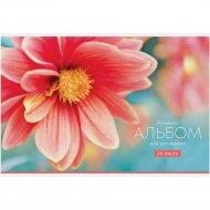 Альбом для рисования А4, на скрепке «ArtSpace» Tenderness, 24 листа