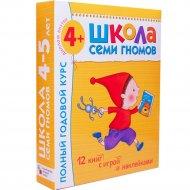 Книга «ШСГ 4-5 ГОДА» полный годовой курс.