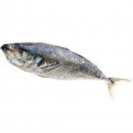 Рыба мороженая «Ставрида» фасованная, 1 кг., фасовка 1.04-1.24 кг