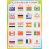 Книга «Флаги стран и их столицы».