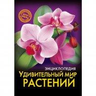 Книга «Удивительный мир растений».