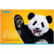 Альбом для рисования А4 «ArtSpace» Funny panda, 20 листов