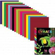 Набор «Птичка» цветная бумага, 16 цветов, 16 л.