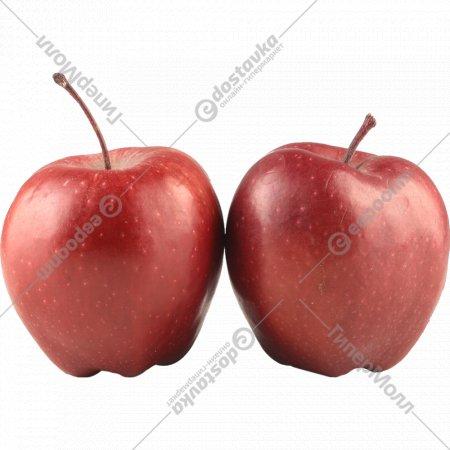 Яблоко «Red Chief» 1 кг., фасовка 0.55-0.75 кг