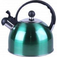 Чайник из нержавеющей стали 2,2 л.