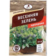 Приправа «Эстетика Вкуса» Весенняя зелень, 15 г.