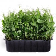 Микрозелень «Горох» 350 г