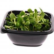 Микрозелень «Подсолнух» 50 г