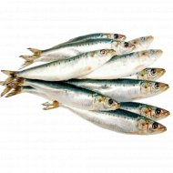 Рыба «Сардина Иваси» замороженная, 1 кг., фасовка 0.9-1.6 кг