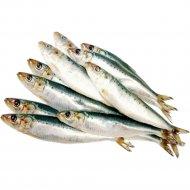Рыба «Сардина Иваси» замороженная, 1 кг., фасовка 0.6-0.8 кг
