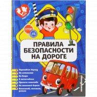 Книга «Правила безопасности на дороге» Василюк Ю.С.