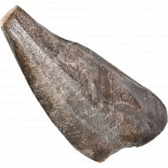 Макрурус черный, замороженный, 1 кг., фасовка 0.9-1.5 кг