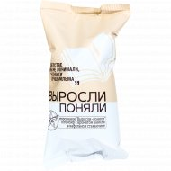 Мороженое «Выросли-поняли» пломбир ванильный, 70 г.