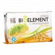Хлебцы хрустящие «Биоэлемент» с пророщенным нутом, 65 г