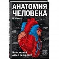 Книга «Анатомия человека: компактный атлас-раскраска».