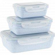 Набор контейнеров для продуктов, К0303.