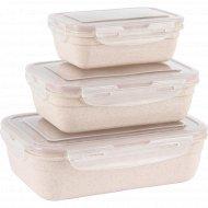 Набор контейнеров для продуктов, K0303.
