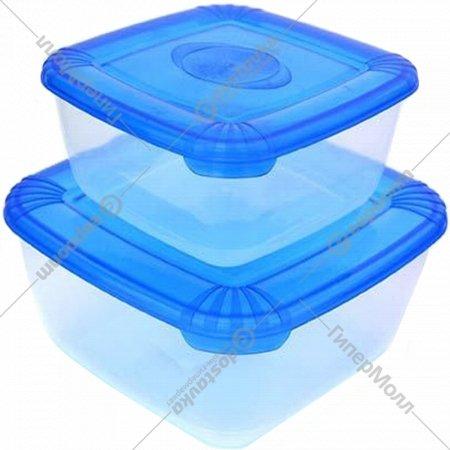 Набор емкостей для продуктов «Polar» коралловый, 2 шт: 0.46 л; 0.95 л.