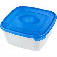 Емкость для СВЧ ««Polar» Micro Wave» квадратная, голубая, 0.95 л.