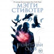Книга «Похитители снов».