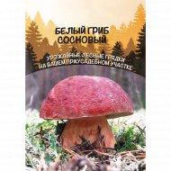 Белый гриб «Сосновый» 15 г