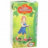 Сок «сады Придонья» яблочно-виноградный, 125 мл.