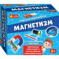 Научная игра «Магнетизм».