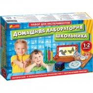Научная игра «Домашняя лаборатория школьника» 1-2 класс.