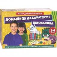 Научная игра «Домашняя лаборатория школьника» 3-4 класс.