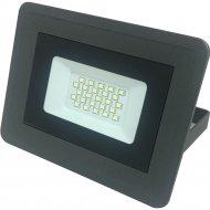 Прожектор «TruEnergy» c пылевлагозащитой, 20 W, IP 65.