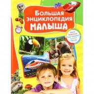 Книга «Большая энциклопедия малыша».