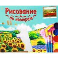 Картина по номерам «Рыжий кот» Маковые поля, 40х50 см