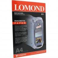Бумага «Lomond» Magnetic, с магнитным слоем, матовая, А4, 2 л.
