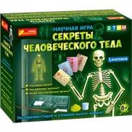 Научная игра «Секреты человеческого тела».