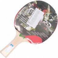 Ракетка для настольного тенниса ST12201.